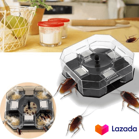 WT Effective Reusable Cockroach Catcher Cockroach Trap Cockroach Killer Cockroach Bait Box 蟑螂陷阱