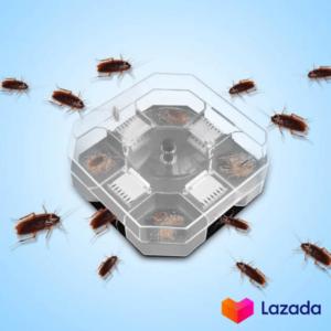 WT Effective Reusable Cockroach Catcher Cockroach Trap Cockroach Killer Cockroach Bait Box 蟑螂陷阱