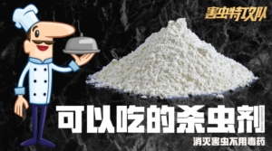 Diatomaceous-Earth-DE-Powder
