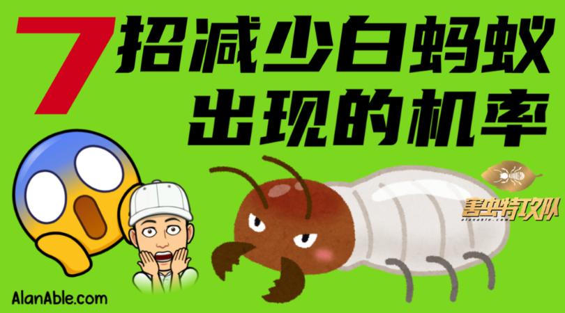 预防白蚁 减少白蚁出现 白蚁专家 新山消灭白蚁专家 白蚁 白蚂蚁 消灭白蚁 灭白蚁 白蚁服务 prevent termite